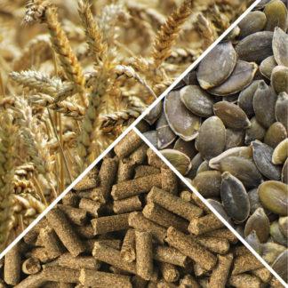 Зерно, семена, шрот